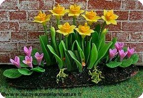 Grand PARTERRE de JONQUILLES jaunes + CROCUS roses - D912
